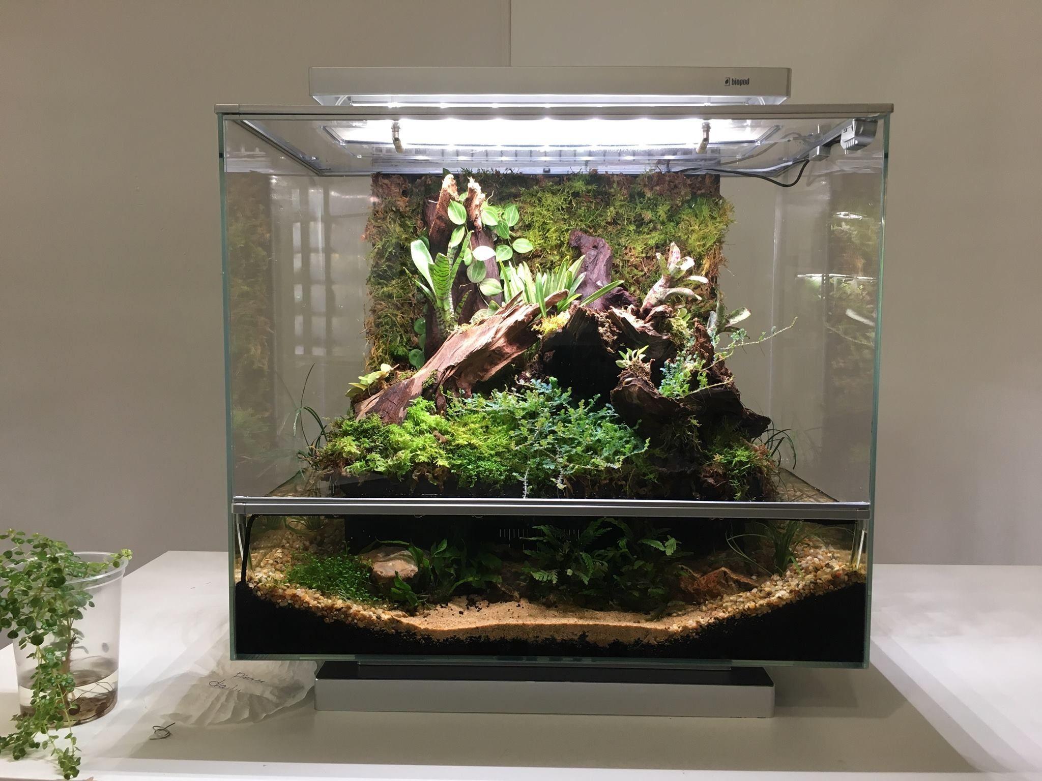 Biopod Aqua The Smart App Control Terrarium